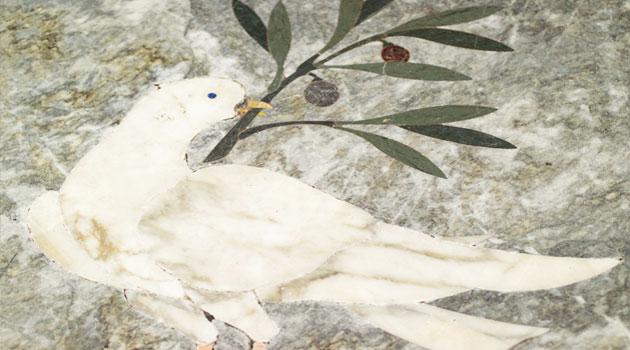 colomba-della-pace